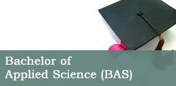 online degrees political science bachelor arts